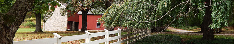 Tree Services Bucks County Montgomery County